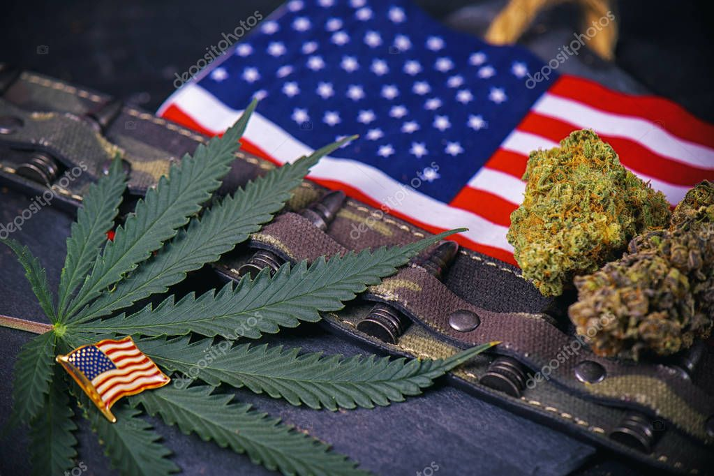 Cannabis buds, leaf and american flag with some bullets - vetera