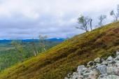 Ukko-Luosto Fell, in Pyha-Luosto National Park