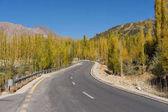 Strada del Karakorum nella stagione di autunno, Valle di Hunza, Gilgit Baltist