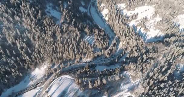 Zimní sezóna zasněžené horské lesy letecké záběry / Dech beroucí přírodní krajina a tmavá horská řeka