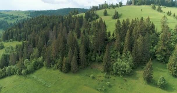 Nyári nap.Ukrajna, Kárpátok, szabadtéri zöld természet táj hegyek vad antenna.4k drón repülés létrehozása lövés