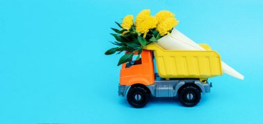 Bouquet of yellow chrysanthemums and Pistacia leaves wrapped in paper in a toy truck on a blue background. Concept of delivering flowers and plants.Copy space for text