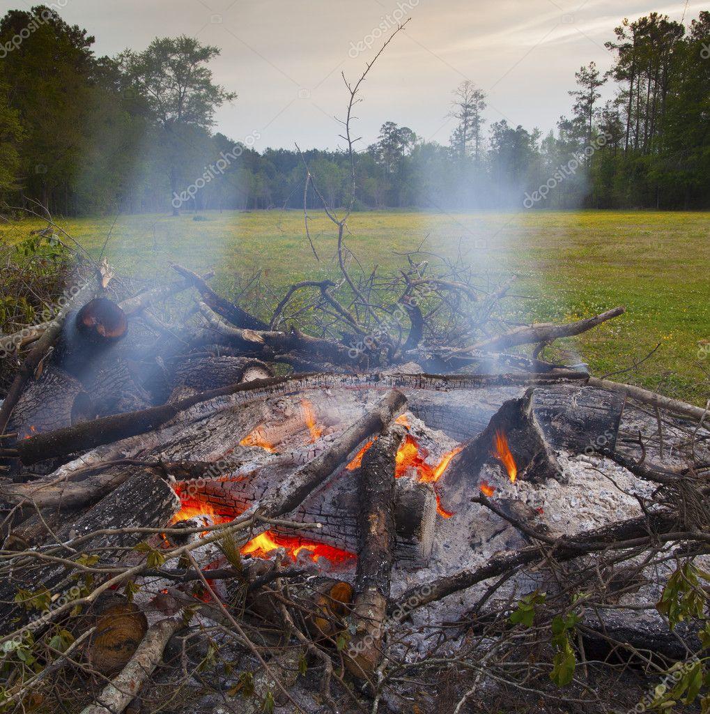 Hot coals in a fire