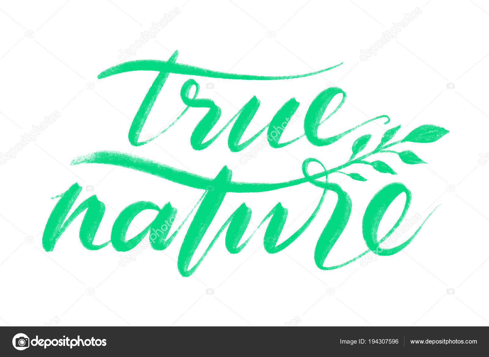 True Nature Words Hand Drawn Creative Calligraphy And Brush Pen