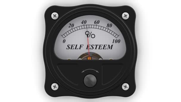 Self esteem indicator in action. The analog indicator is showing the level of SELF ESTEEM in percentages. Footage video