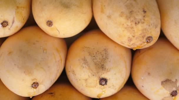 Mango Fruits. Close-Up.
