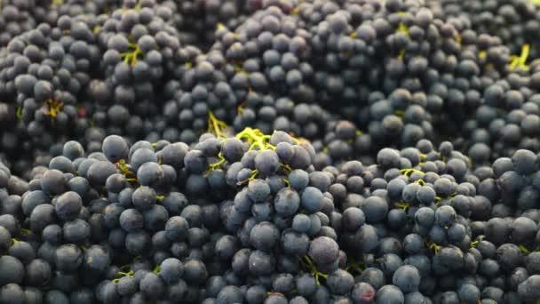 Szekrény fekete szőlő a piacon