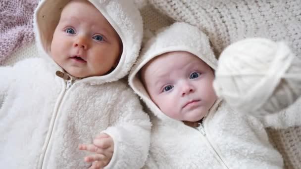 Two Twin Babies, Four Months Old Girls In Bed On Cosy Knit Blanket.