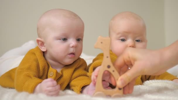 Twin Babies Playing With Stylish Wooden Toys. Eco Friendly Plastic Free Educational Toys For Toddler.