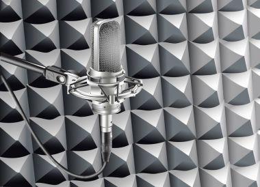 Studio Microphone for recording in radio studio