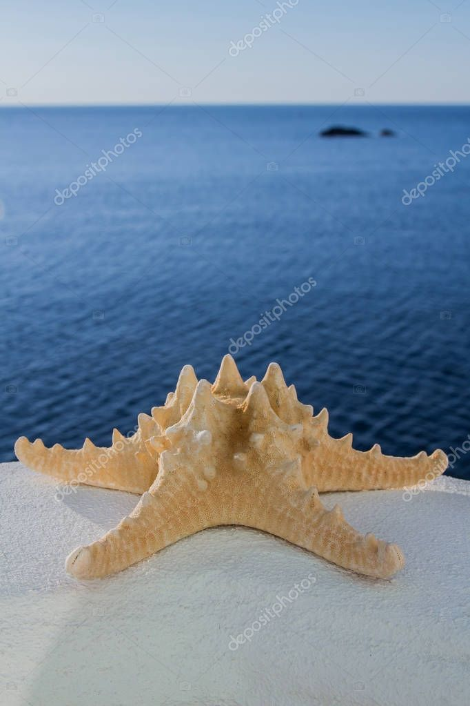 Beautiful starfish on the white surface on the smooth blue sea landscape, closeup