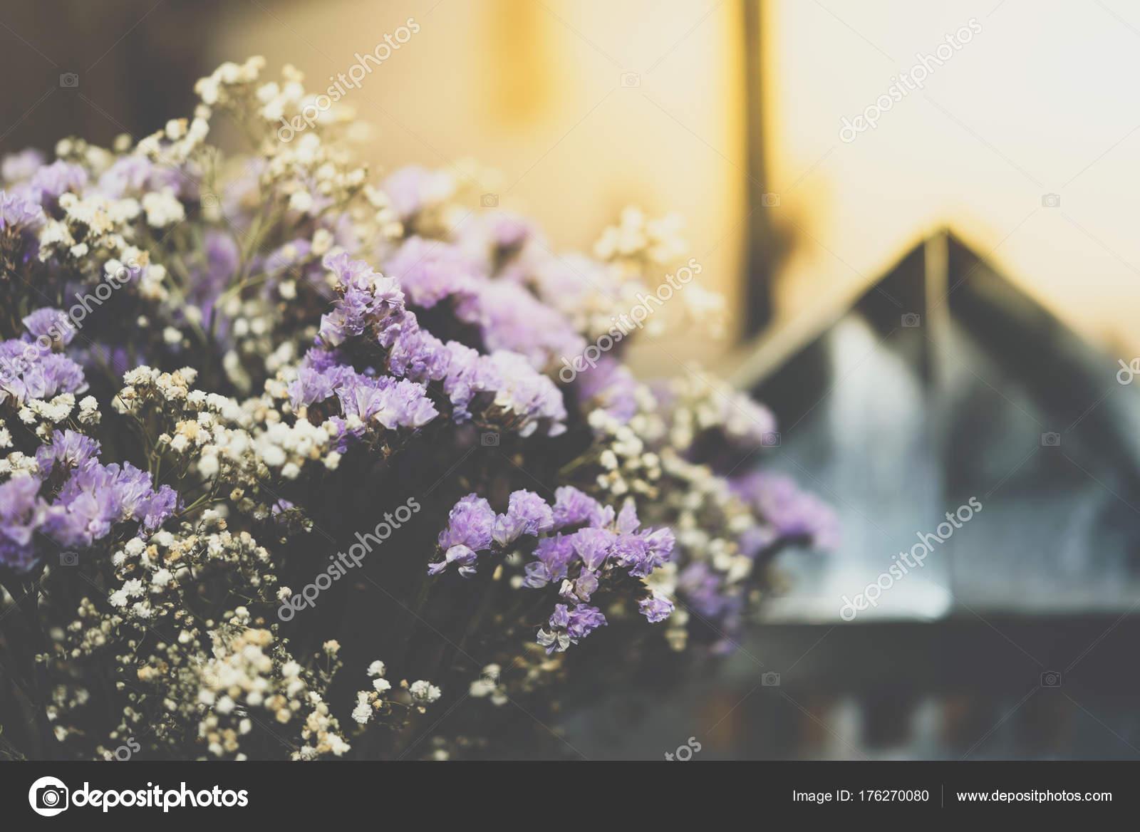 Fiori secchi con priorità bassa del bokeh di luci u2014 foto stock