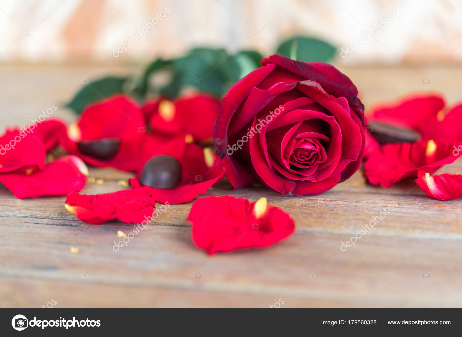 Red rose flower on wooden floor in valentines day stock photo red rose flower nature beautiful flowers from the garden and petal of red rose flower and chocolate on wooden floor with copy space in valentines day izmirmasajfo