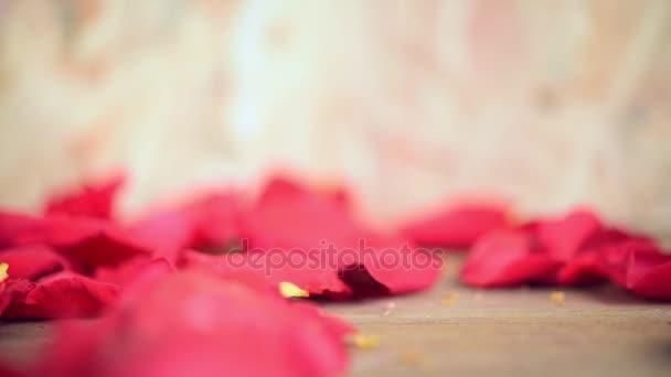 Růžové růže květ příroda krásné květiny ze zahrady a petal červený květ růže na dřevěné podlaze s kopie prostoru v den svatého Valentýna, svatba nebo romantické lásky konceptu