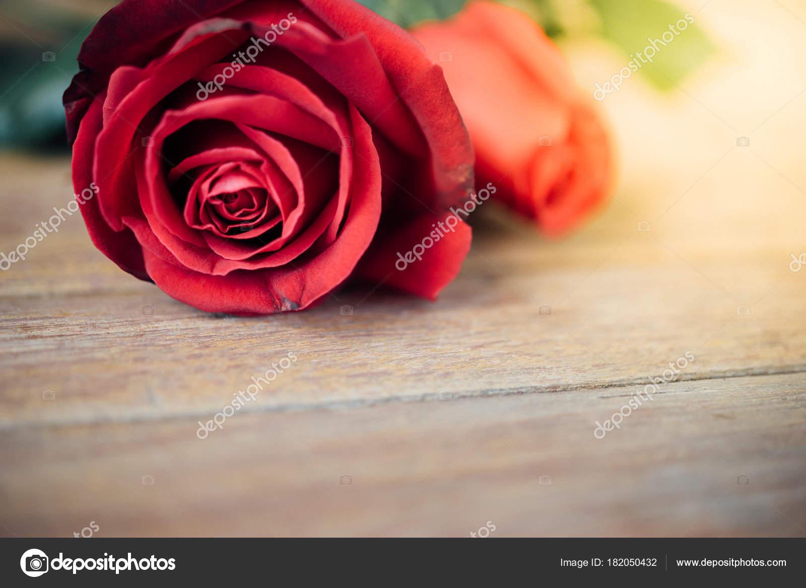 Red rose flower nature beautiful flowers garden valentines wooden red rose flower nature beautiful flowers garden valentines wooden floor stock photo izmirmasajfo