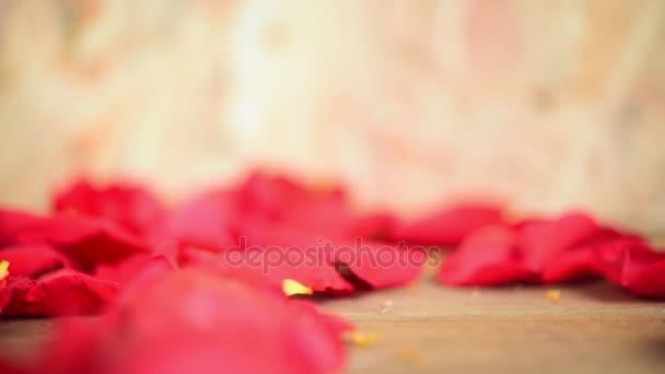 Rózsaszín rózsa virág természet gyönyörű virágok a kertre és a vörös rózsa virág szirom a Valentin a fa padló a másol hely a Valentin nap, esküvő, vagy romantikus szerelem Valentin koncepció