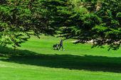 Golfové hráče na zeleném poli, letní den, Bretagne