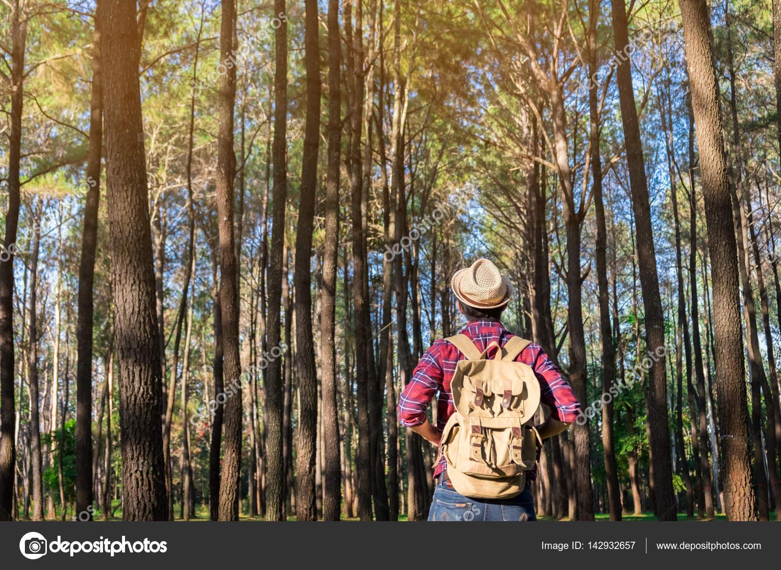 Junger Mann allein im Wald unterwegs mit Sonnenuntergang Natur auf ...