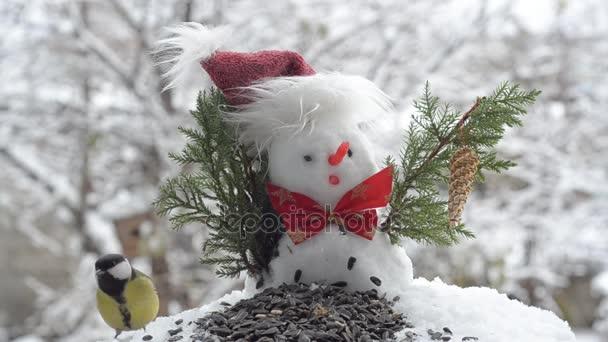 Karácsony-hóember és a madarak