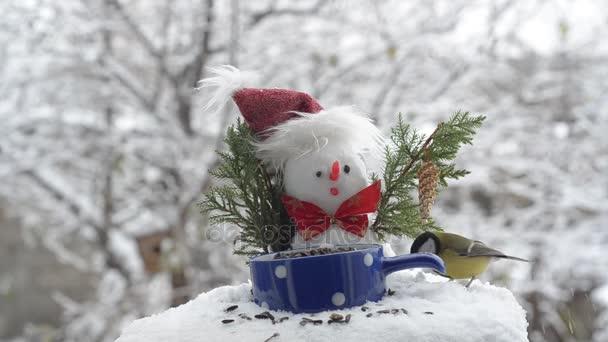 Sněhulák v klobouku a velké kozy, jíst semínka. Létat a skákat na větve