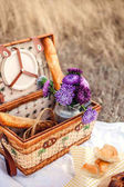 Photo Picnic set with cheese, toast