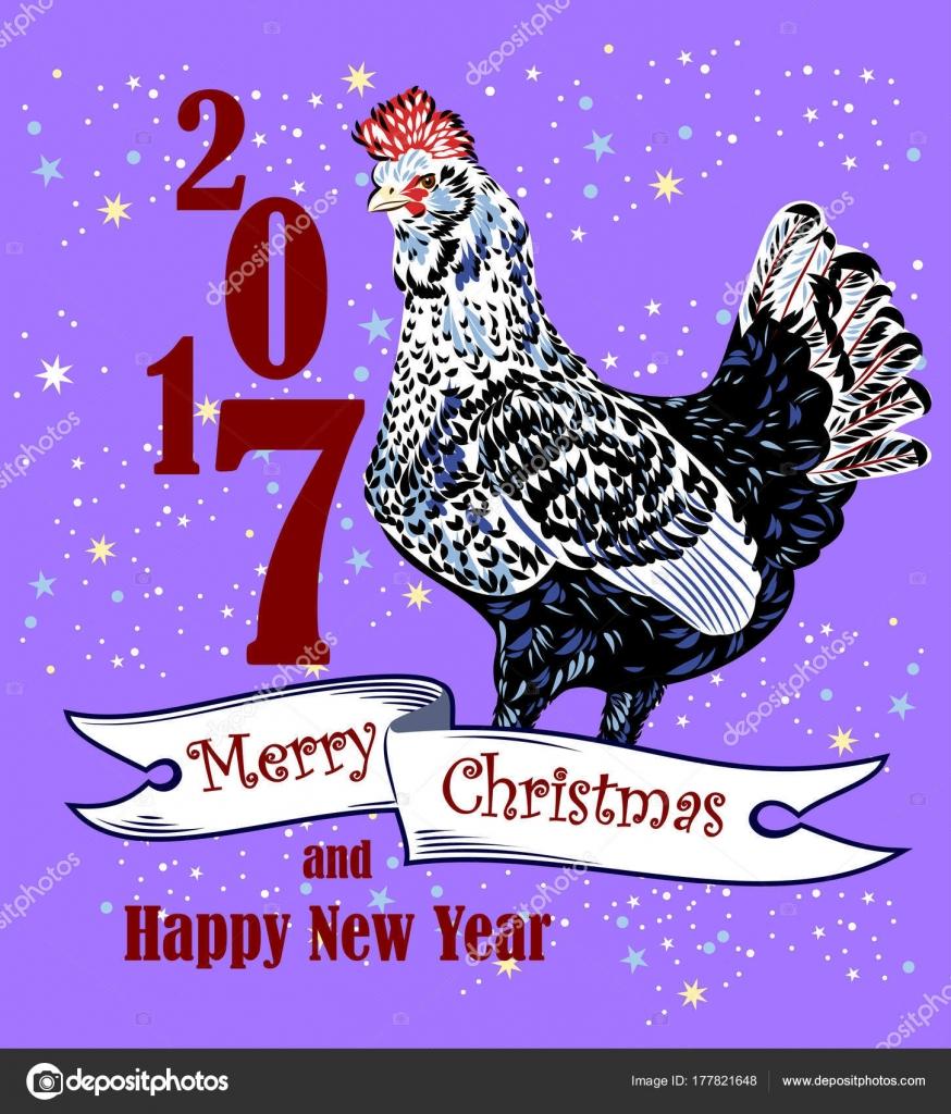 Image Elegant Beautiful Chicken Colorful Feathers Symbol 2017