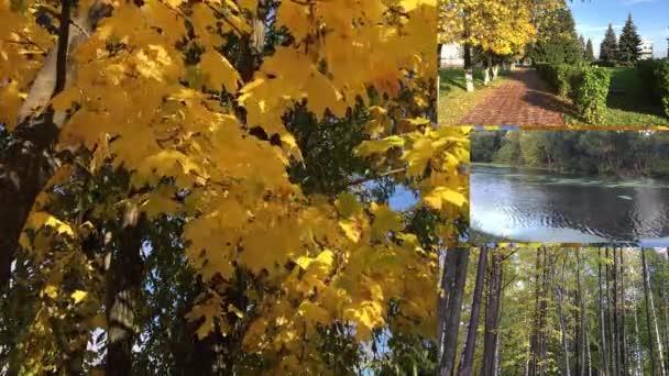Městský Park, ulice a uličky města na podzim