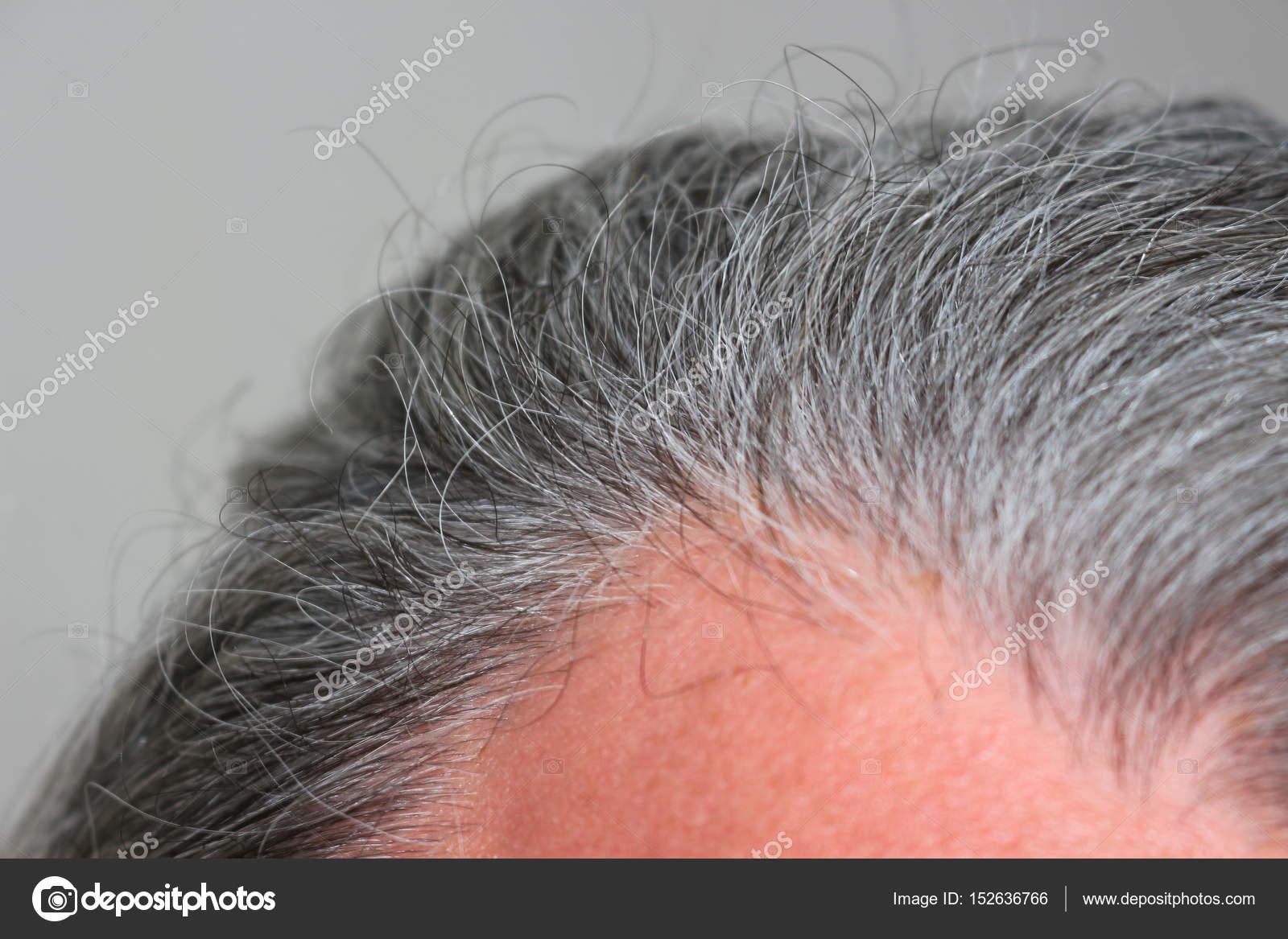 Graue Haare Männer Stockfoto Bogdych 152636766