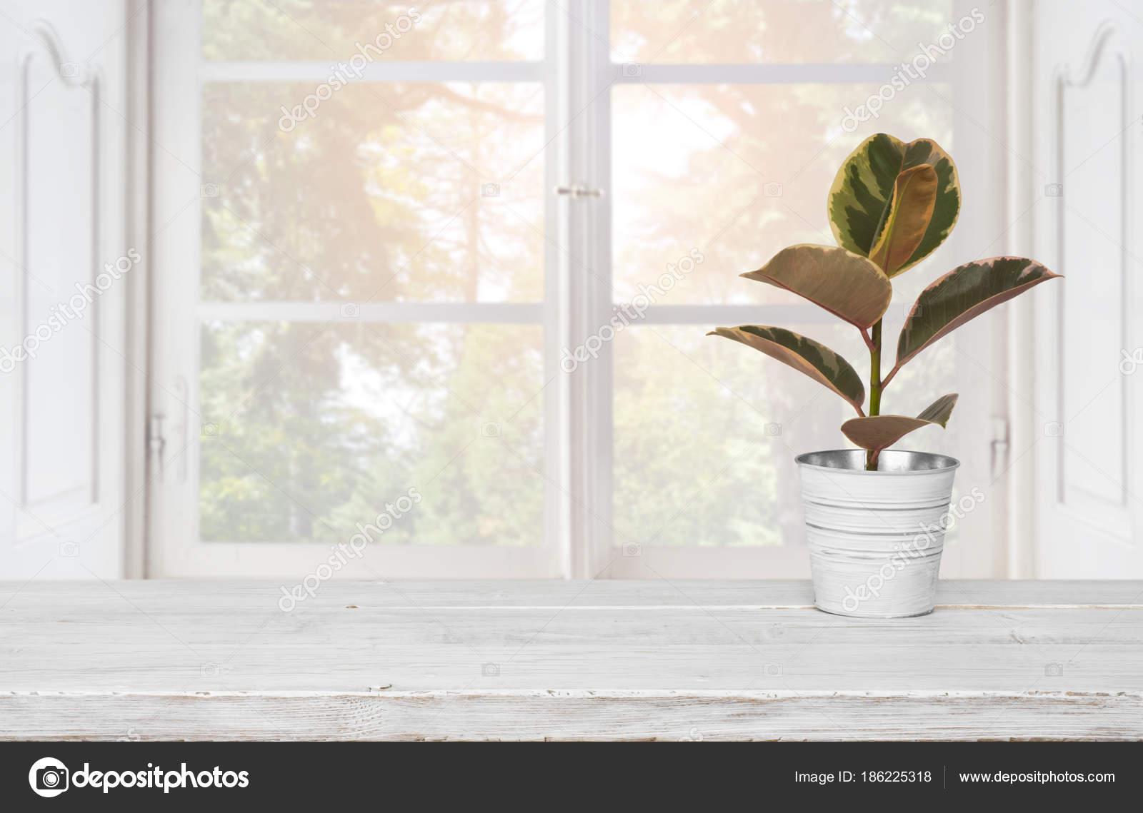 Holztisch Mit Blumentopf Auf Unscharfen Hintergrund Des Fensters ...