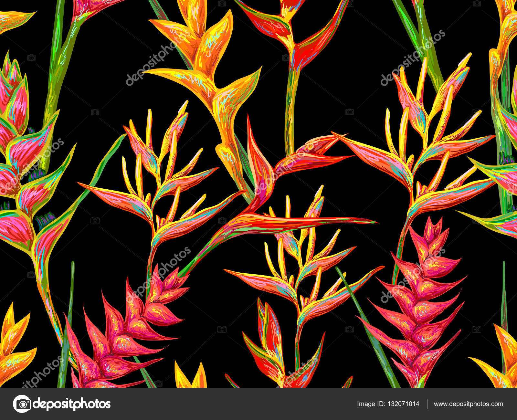 Flores Vectoriales Con Fondo Transparente: Patrón Transparente Con Flores De Heliconia