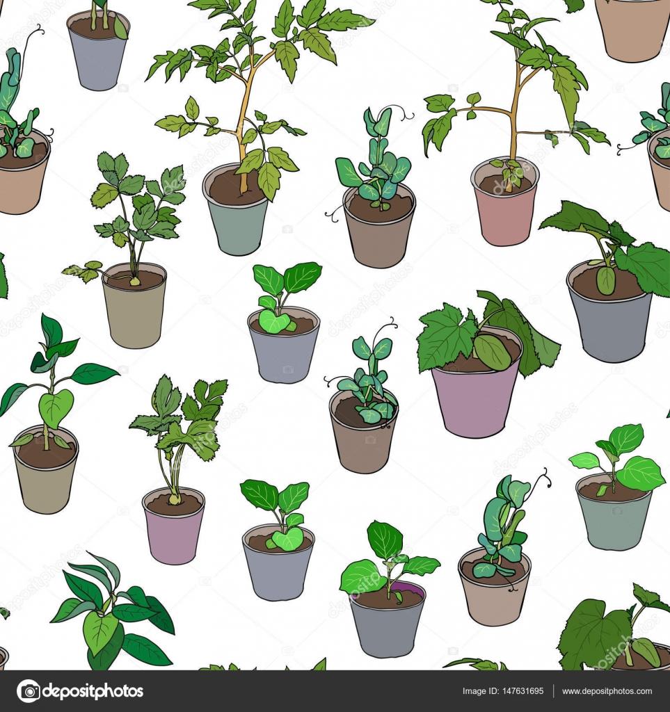 Maceta diseo maceta de diseo wave macetadiseo libre png for Varias plantas en una maceta