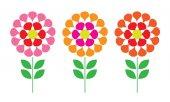 Fotografie květiny izolovaných na bílém pozadí