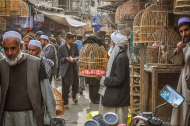 Market with birds in Afghanistan