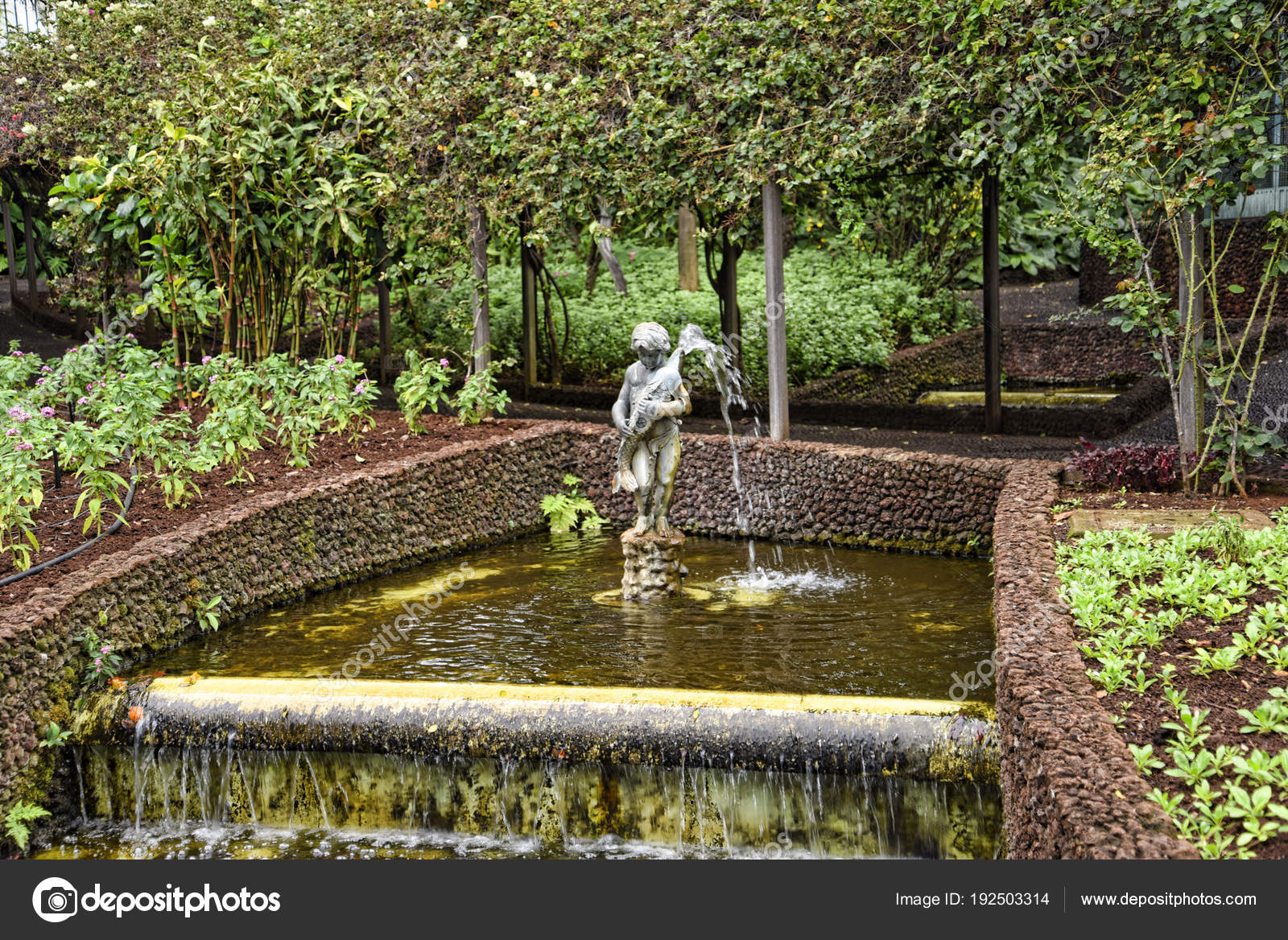 Lovely Garden Governor Palace Funchal Madeira Portugal Its Flower ...