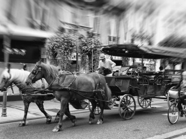 Touristic Tours in Carriage in Tarbes France