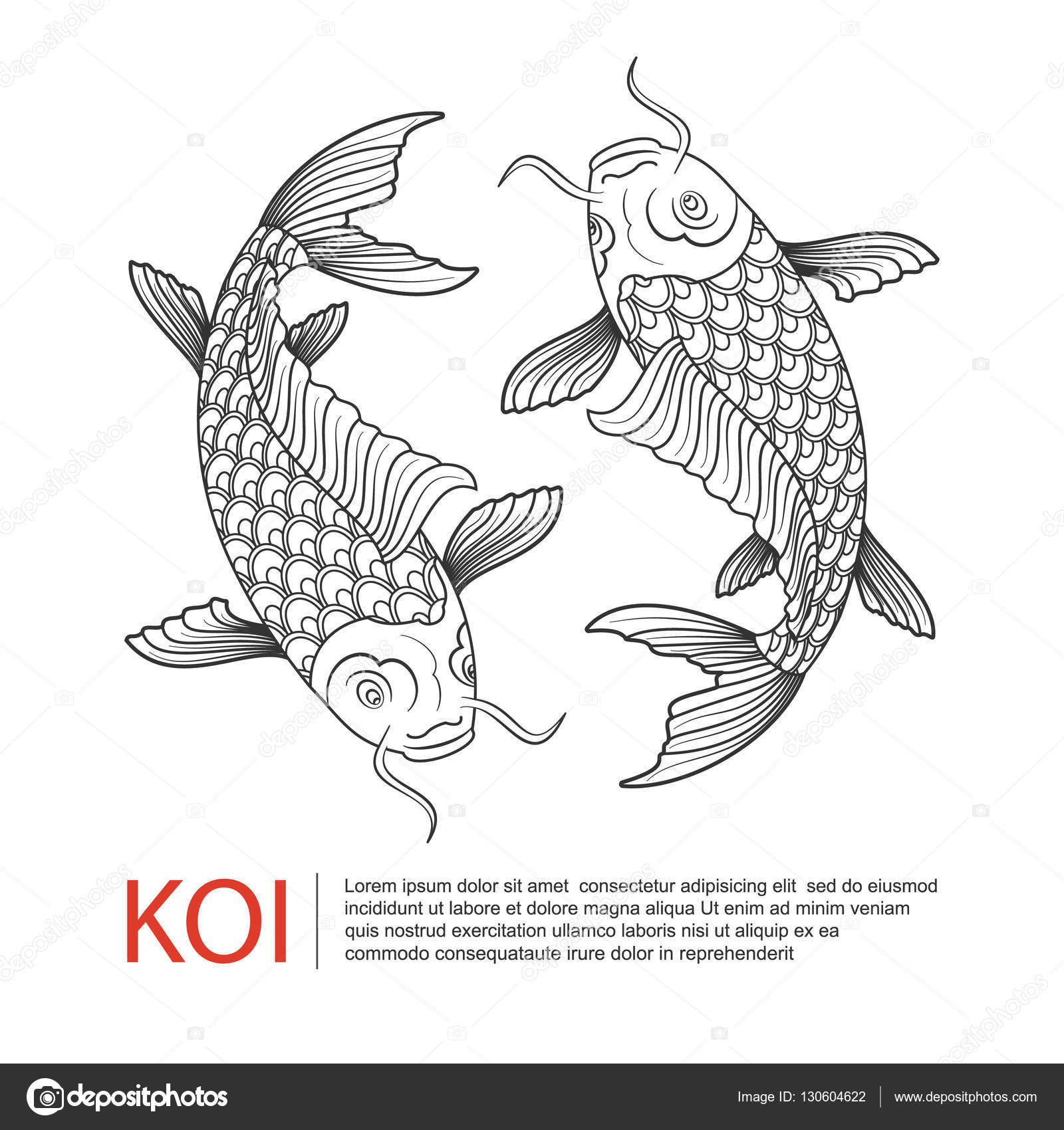 dessin au trait dessin s la main de la carpe ko carpe poisson logo vecteur image. Black Bedroom Furniture Sets. Home Design Ideas