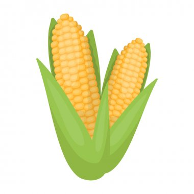 Sweet corn icon in cartoon style isolated on white background. Canadian Thanksgiving Day symbol stock vector illustration.