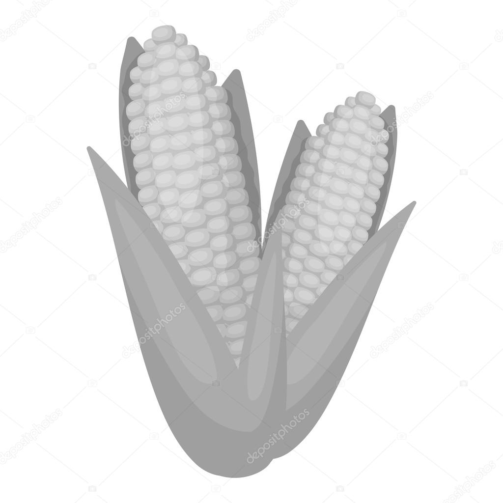 Sweet corn icon in monochrome style isolated on white background sweet corn icon in monochrome style isolated on white background canadian thanksgiving day symbol stock biocorpaavc Choice Image
