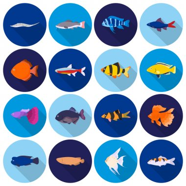 Aquarium fish set icons in flat style. Big collection aquarium fish vector symbol stock illustration