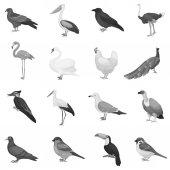 Fotografie Vogel inmitten monochromen Stil Ikonen. Große Sammlung von Vogel-Symbol Lager Vektorgrafik
