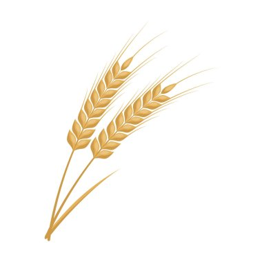 Ears of wheat pasta icon in cartoon style isolated on white background. Types of pasta symbol stock vector illustration.