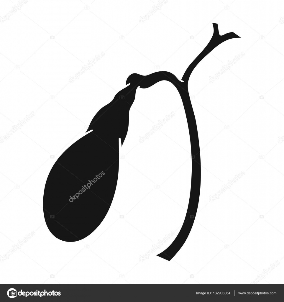 Icono de la vesícula biliar humana en estilo negro aislado sobre ...