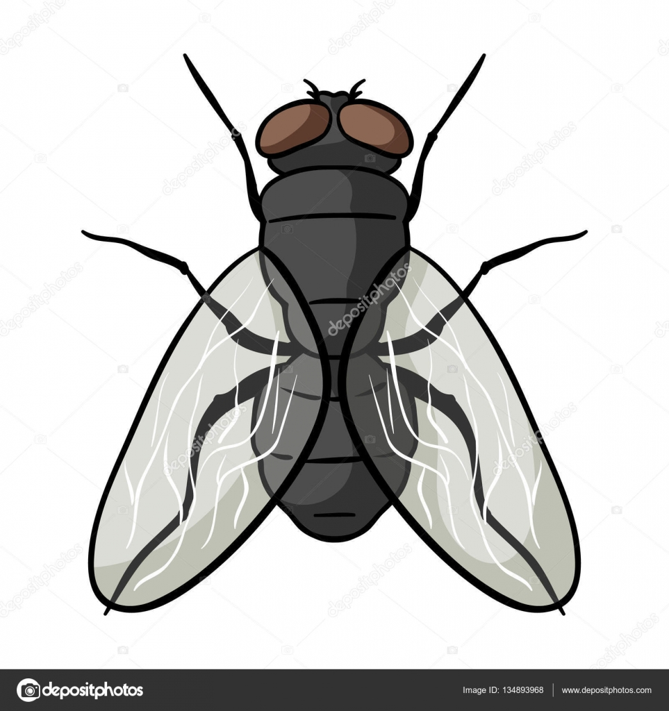 dibujos de moscas gallery of moscas y caca de dibujos animados u archivo imgenes vectoriales mosquito clipart cartoon mosquito clipart black and white