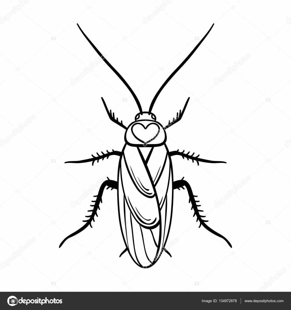 ic ne de cafard dans le style de contour isol sur fond blanc insectes symbole illustration. Black Bedroom Furniture Sets. Home Design Ideas