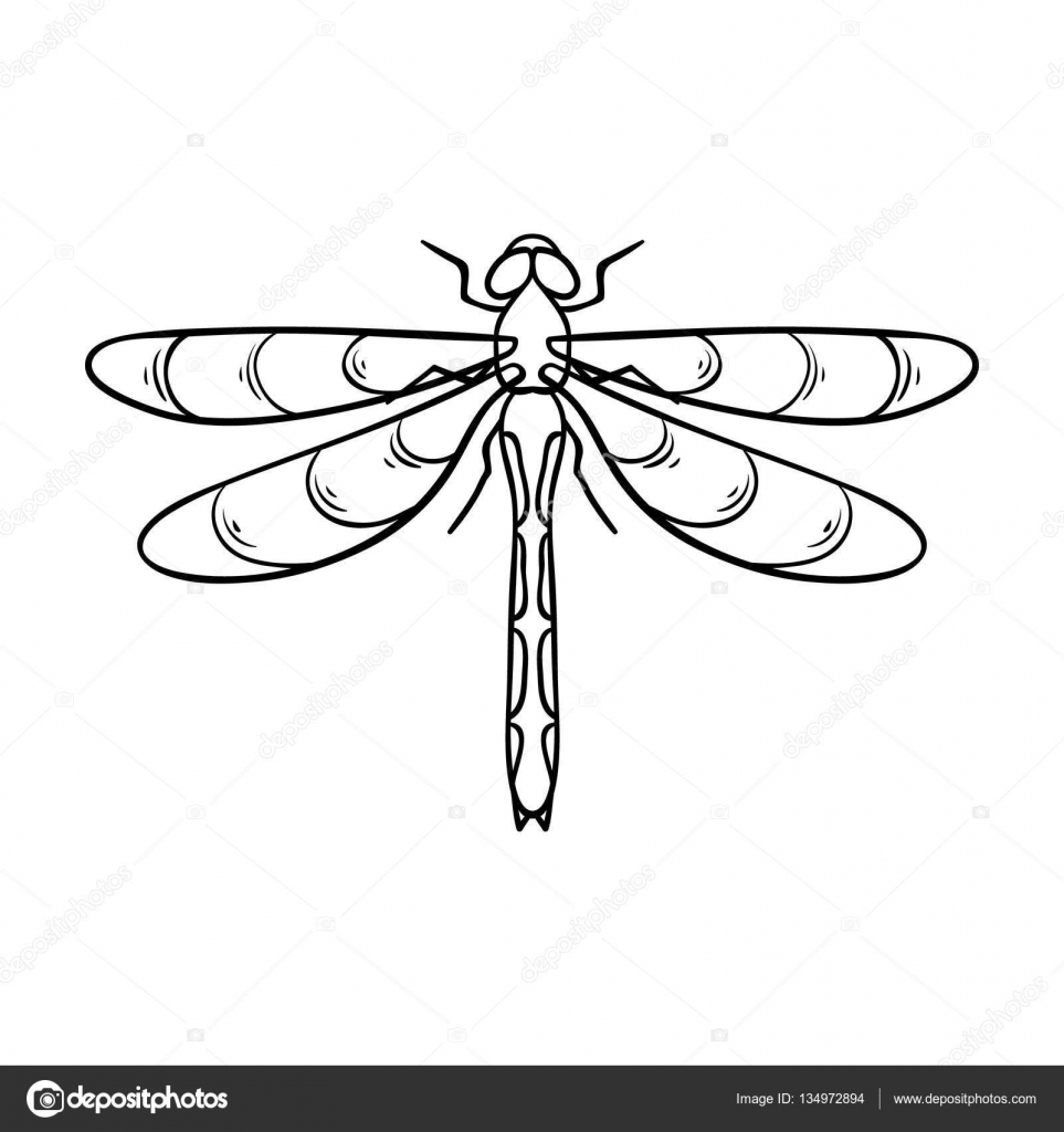 Dragonfly icon in outline style isolated on white background dragonfly icon in outline style isolated on white background insects symbol stock vector illustration biocorpaavc