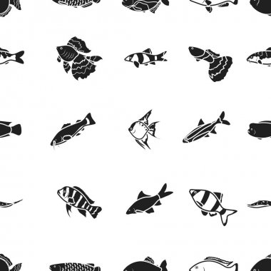 Aquarium fish pattern icons in black style. Big collection of aquarium fish vector symbol stock illustration