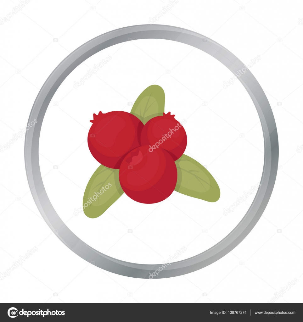Cranberry icon in cartoon style isolated on white background cranberry icon in cartoon style isolated on white background canadian thanksgiving day symbol stock vector biocorpaavc Choice Image