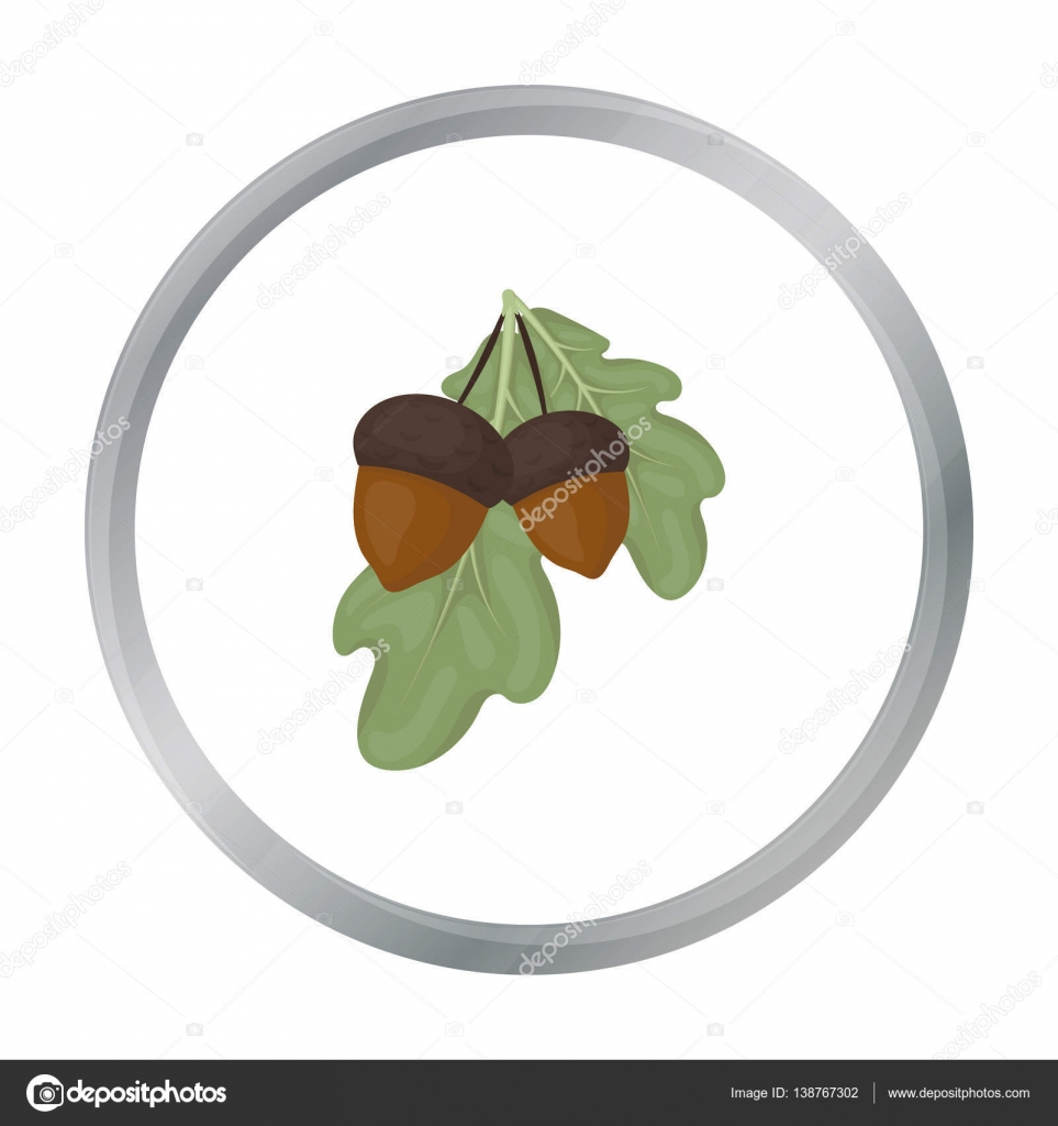 Acorns icon in cartoon style isolated on white background acorns icon in cartoon style isolated on white background canadian thanksgiving day symbol stock vector biocorpaavc Choice Image
