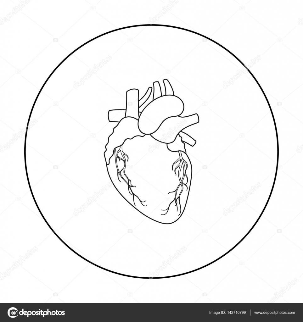 Icono del corazón de contorno estilo aislado sobre fondo blanco ...