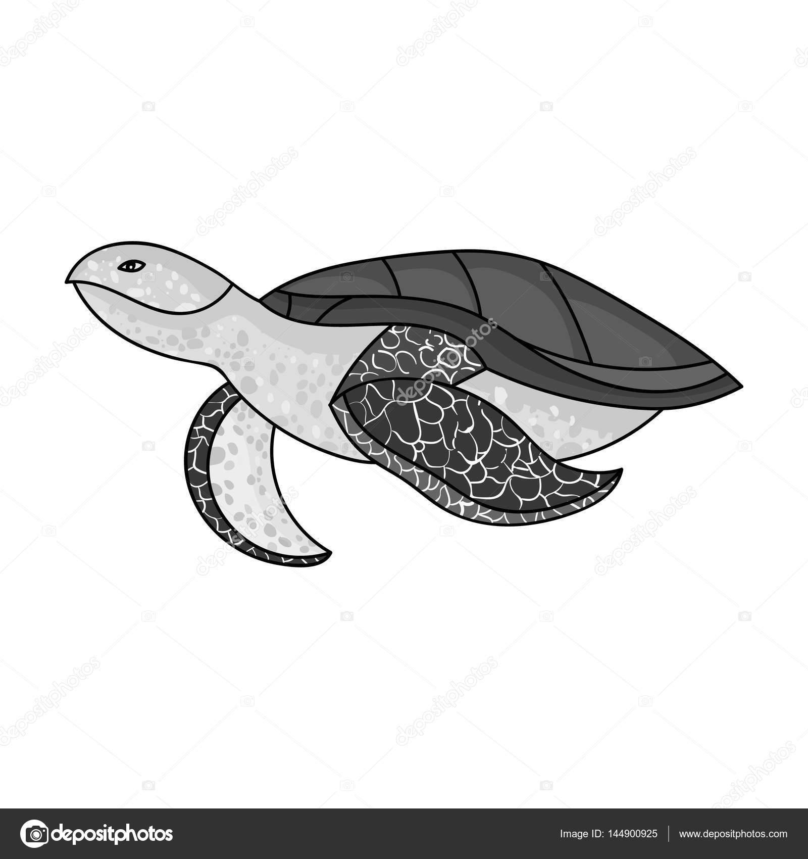 Icono de la tortuga en estilo monocromo aislado sobre fondo blanco ...